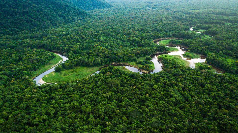 Brazilian singer Vital Farias' 'An Amazon Tale' in poetic new English translation
