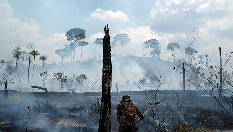 New Amazonian Atlas reveals that a third of the rainforest is threatened