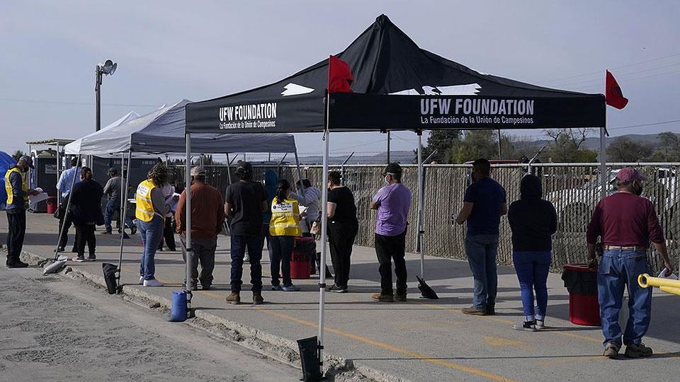 Avanza la vacunación de trabajadores agrícolas en California