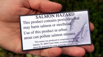 EPA takes action to protect Pacific salmon from pesticides