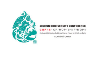 What is the COP15 biodiversity summit, and why is it so important?